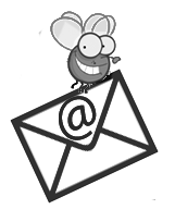 pro email designed for you